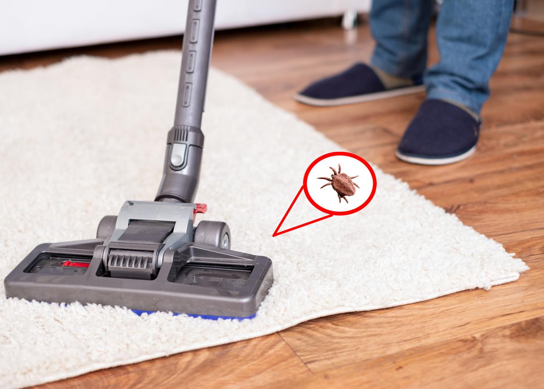 Oxfordshire Pest Control