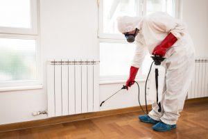 Pest Controller Spraying